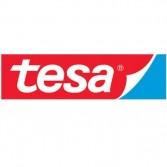 Cinta Tesa