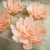 Foam Extrafino especial para Flores