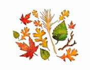 Set 14 troqueles THINLITS Fall foliage E660955