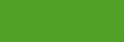 Cobra Study 200ml Verde Permanente Claro