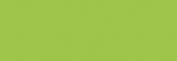 Copic Sketch Rotulador - Celadon Green