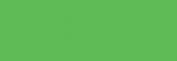 Copic Sketch Rotulador - Apple Green