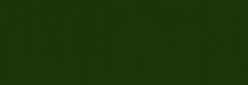 Pintura al óleo Titán 200 ml Tierra verde