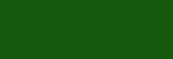 Pintura al óleo Titán 200 ml Verde vejiga