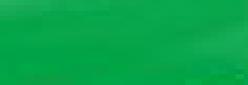 Rotulador Ecoline de acuarela - Spreen Green