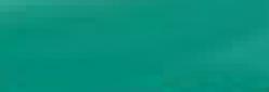 Rotulador Ecoline de acuarela - Deep Green