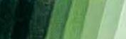 Mussini Schmincke Óleo-resina extrafino 150 ml. Serie 2 - Verde Vejiga