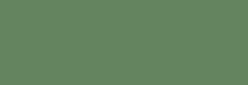 Touch Marker Brush Shinhan Rotulador Deep Olive Green