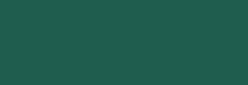 Touch Marker Brush Shinhan Rotulador Dark Green
