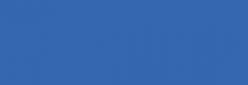 Touch Marker Brush Shinhan Rotulador Brillant Blue