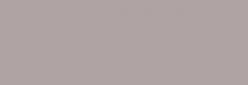 Touch Marker ShinHan Twin - Warm Grey 4