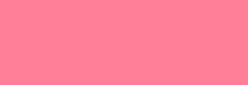 Touch Markers ShinHan Twin - Rose Pink
