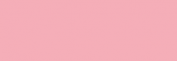 Touch Markers ShinHan Twin - Pale Pink