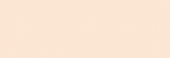 Touch Markers ShinHan Twin - Barely Beige
