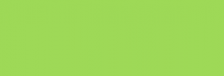 Touch Markers ShinHan Twin - Spring Green