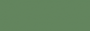 Touch Markers ShinHan Twin - Deep Olive Green