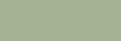 Touch Markers ShinHan Twin - Grayish Olive Green
