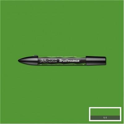 BrushMarker Winsor&Newton Rotulador G356