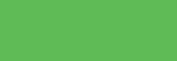 ShinHan Touch Liner Brush Verde