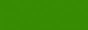 Rotulador Lyra Aqua Brush Duo - Verde