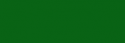 Rotulador Lyra Aqua Brush Duo - Verde Noche