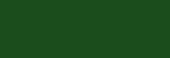Aerocolor Schmincke Aerografía Professional 28 ml - Verde Oliva