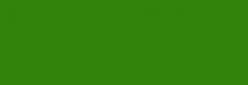 Acuarela Van Gogh Pastillas 1/2 Godet - Verde Hooker Claro