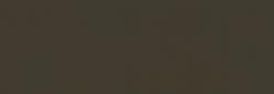 Acuarela Van Gogh Pastillas 1/2 Godet - Negro Óxido