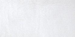Acuarela Van Gogh Pastillas 1/2 Godet - Plata