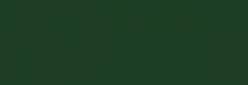 Dupont Classique Pintura para seda y lana 250 ml  - Vert Sapin