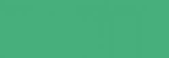 Dupont Classique Pintura para seda y lana 250 ml  - Vert Nil