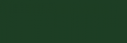 Dupont Classique Pintura para seda y lana 250 ml  - Vert Anglais