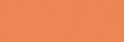 Dupont Classique Pintura para seda y lana 250 ml  - Saumon