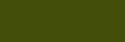 Dupont Classique Pintura para seda y lana 250 ml  - Olive