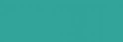 Dupont Classique Pintura para seda y lana 250 ml  - Caraïbe