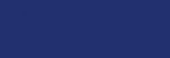 Dupont Classique Pintura para seda y lana 250 ml  - Marine