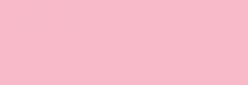Dupont Classique Pintura para seda y lana 250 ml  - Églantine