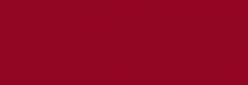 Dupont Classique Pintura para seda y lana 250 ml  - Bordeaux