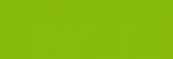Dupont Classique Pintura para seda y lana 250 ml  - Vert Anis