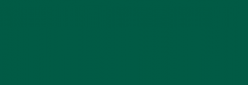 Dupont Classique Pintura para seda y lana 250 ml  - Émeraude