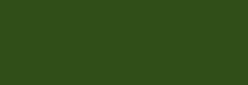 Dupont Classique Pintura para seda y lana 250 ml  - Tilleul