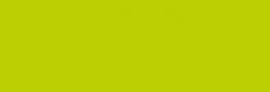 Dupont Classique Pintura para seda y lana 250 ml  - Citron