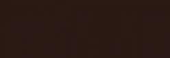 Dupont Classique Pintura para seda y lana 250 ml  - Négrillon