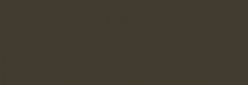 Dupont Classique Pintura para seda y lana 250 ml  - Sépia Foncé