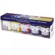 Guache Talens 5 colores primarios 50 ml