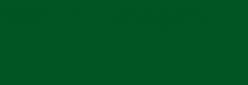 Pintura Pizarra Negra Pébéo 250 ml - Green Dark