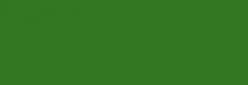 Pintura Pizarra Negra Pébéo 250 ml - Rain Forest Green