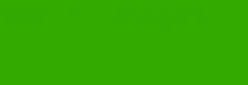 Pintura Pizarra Negra Pébéo 250 ml - Bright Green