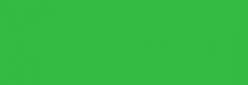 Pintura Pizarra Negra Pébéo 250 ml - Medium Green