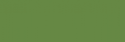 Pintura Pizarra Negra Pébéo 250 ml - Olive Moss